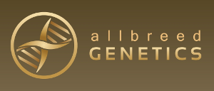 all breed genetics logo