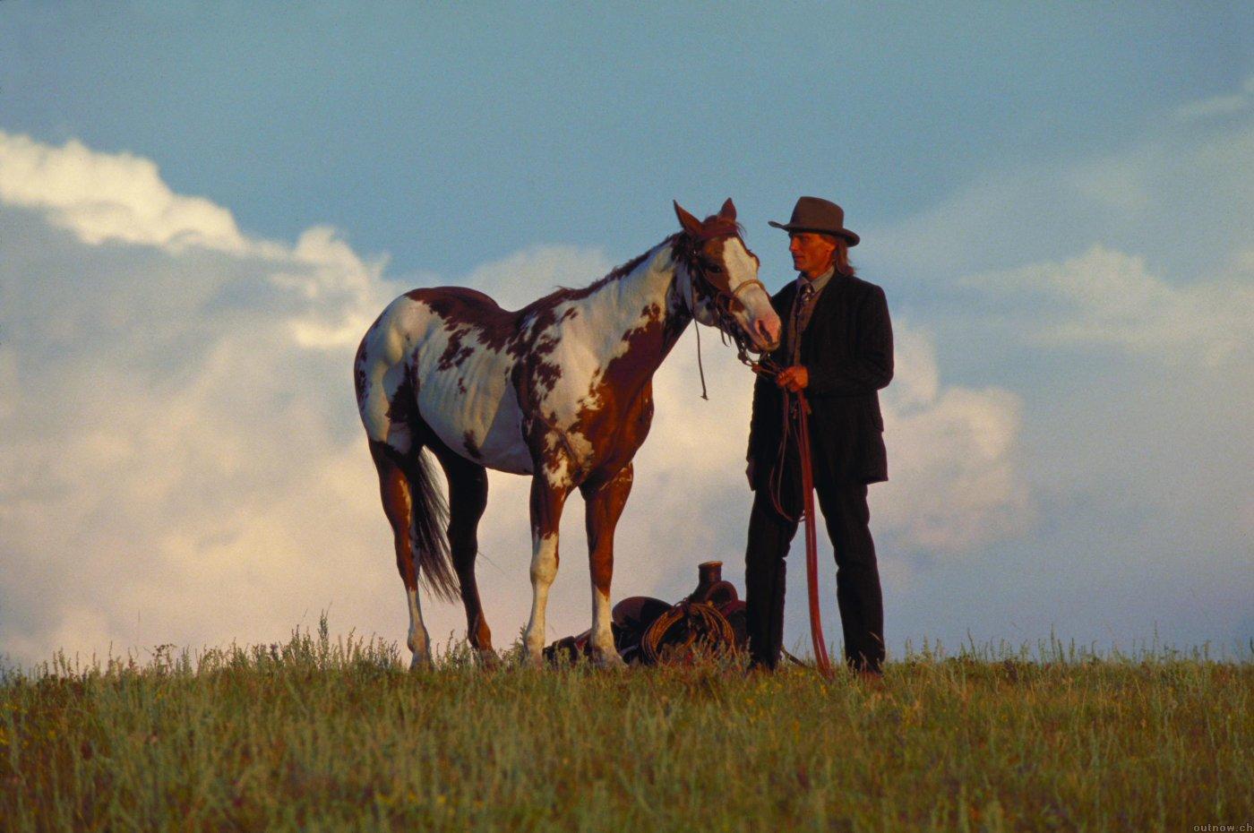 Hidalgo Pferd