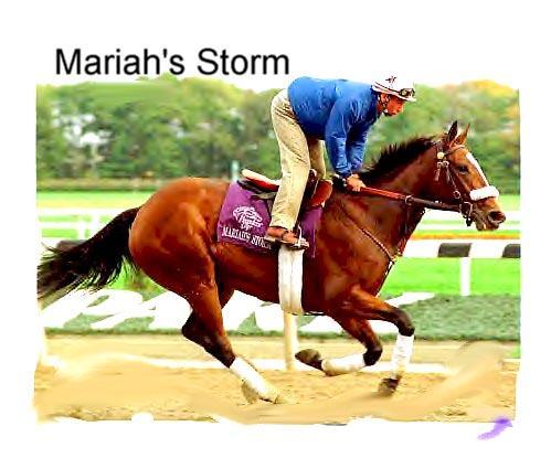 Mariah's Storm