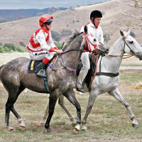 Tambo Vallery Race