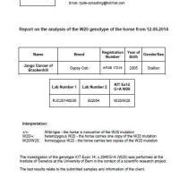 homozgyous W20 Stallion Jango test results