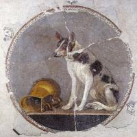 ancient black and tan piebald dog
