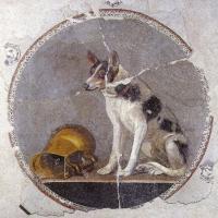 ancient black and tan piebald dog