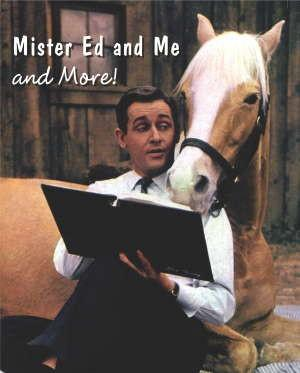 mr ed was a zebra